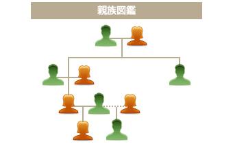 戸籍謄本・親族図表